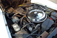 Picture of 1981 Chevrolet Corvette Coupe, engine, gallery_worthy