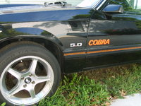 Picture of 1979 Ford Mustang Cobra, exterior