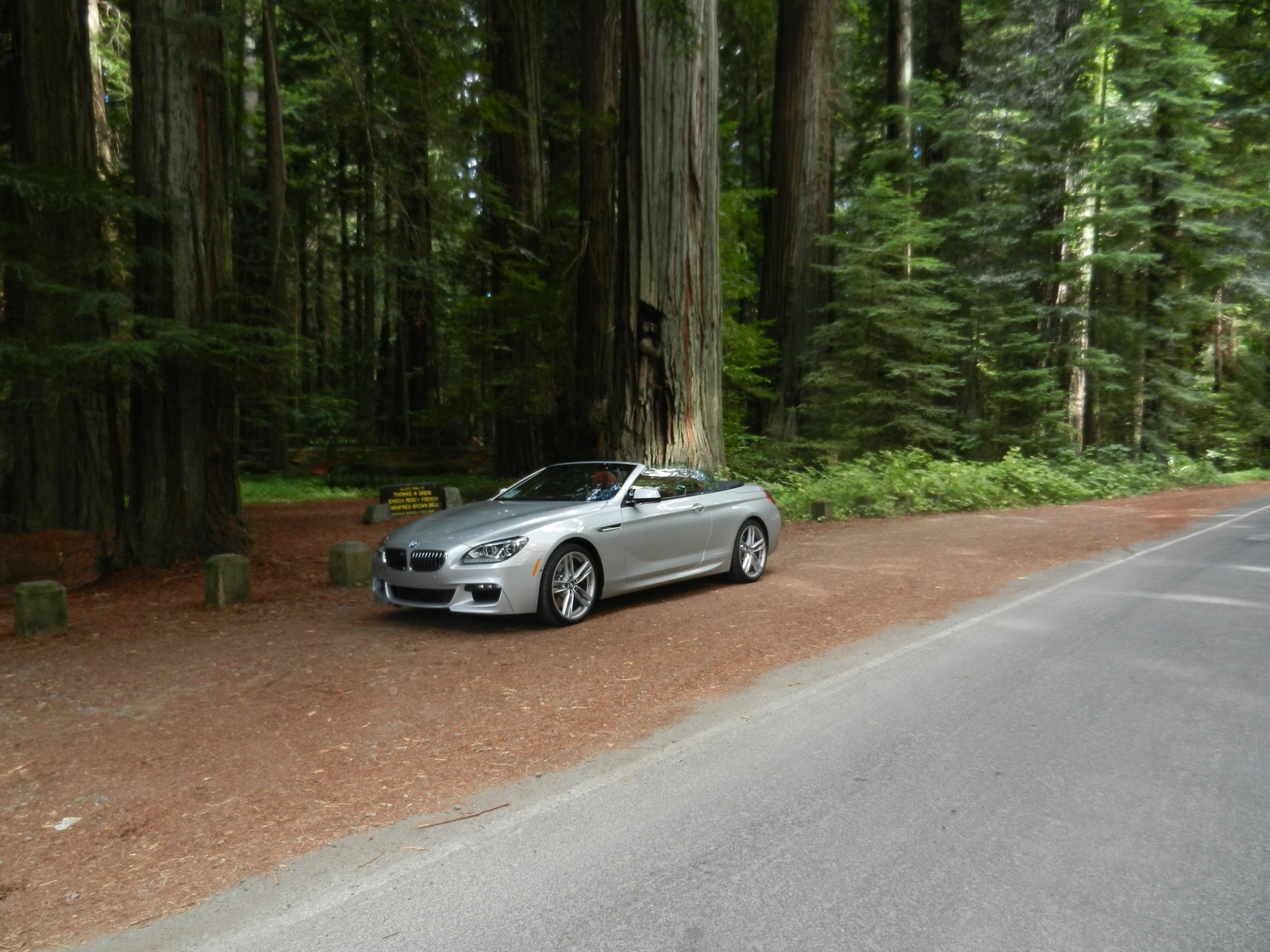 640i in Redwoods
