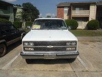 Picture of 1989 Chevrolet Suburban R20, exterior