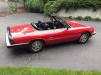 1988 Alfa Romeo Spider Overview