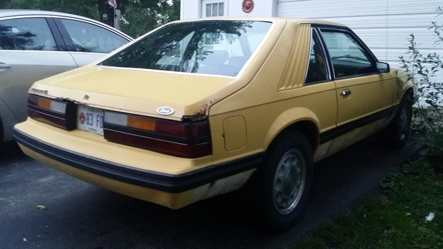 Picture of 1983 Ford Mustang GL Hatchback RWD, exterior, gallery_worthy