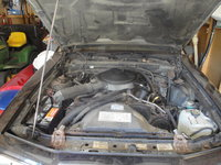 Picture of 1986 Ford Thunderbird Base, engine