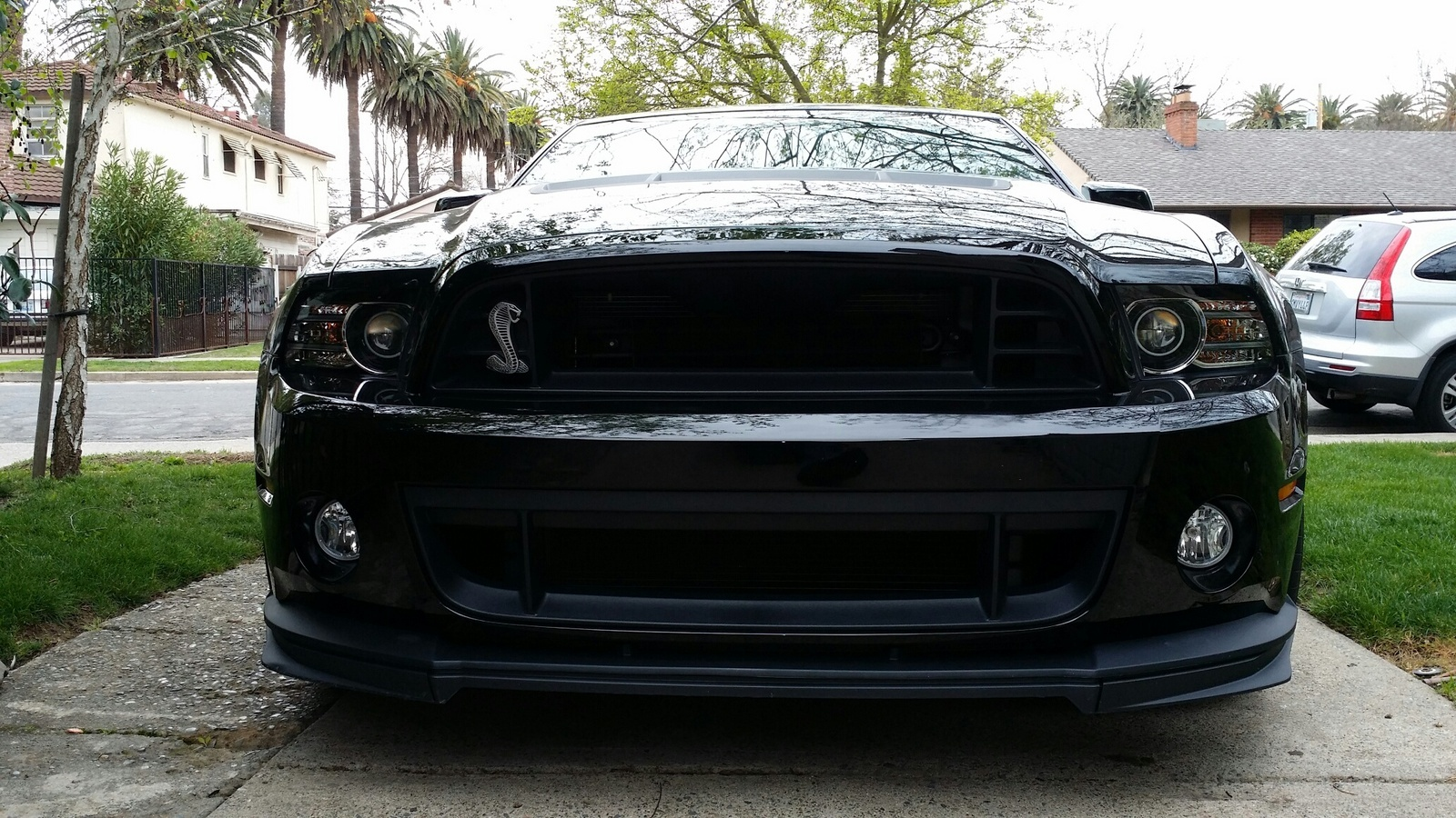 2014 Gt500 Build Numbers | Autos Post