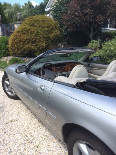 Picture of 1999 Jaguar XK-Series XK8 Convertible