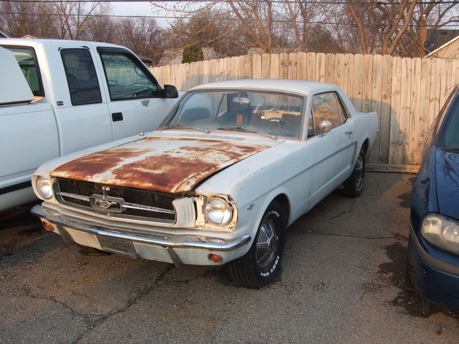 Ford Mustang Questions Rare 64 1 2 Cargurus