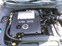 2006 Nissan Maxima 3.5 SE picture, engine