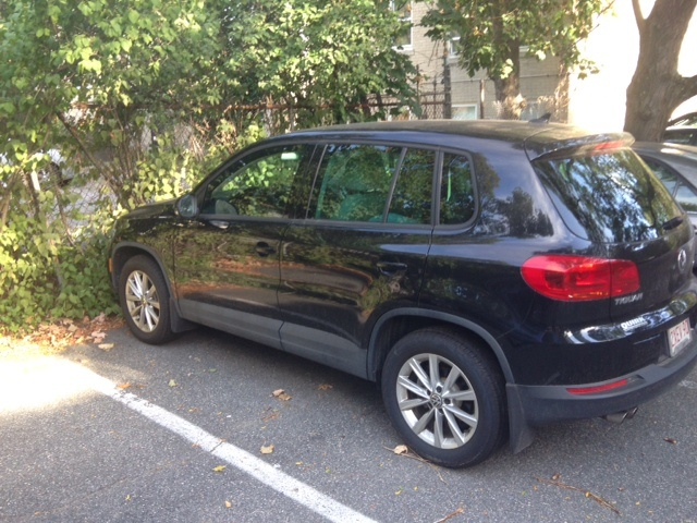 Picture of 2014 Volkswagen Tiguan SE 4Motion
