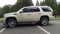 Picture of 2014 Cadillac Escalade Platinum Edition AWD