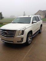 Picture of 2015 Cadillac Escalade Platinum Edition