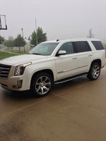 Picture of 2015 Cadillac Escalade Platinum Edition, exterior