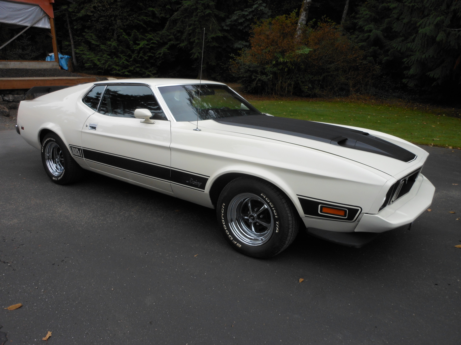1973 ford mustang mach 1 for sale cargurus. Black Bedroom Furniture Sets. Home Design Ideas