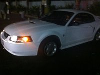 Picture of 2000 Ford Mustang Base