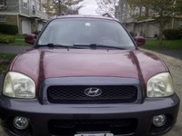 Picture of 2003 Hyundai Santa Fe LX, exterior