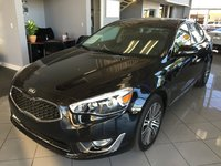 Picture of 2014 Kia Cadenza Limited, exterior