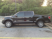 Picture of 2014 Ford F-150 Platinum SuperCrew 4WD, exterior, gallery_worthy