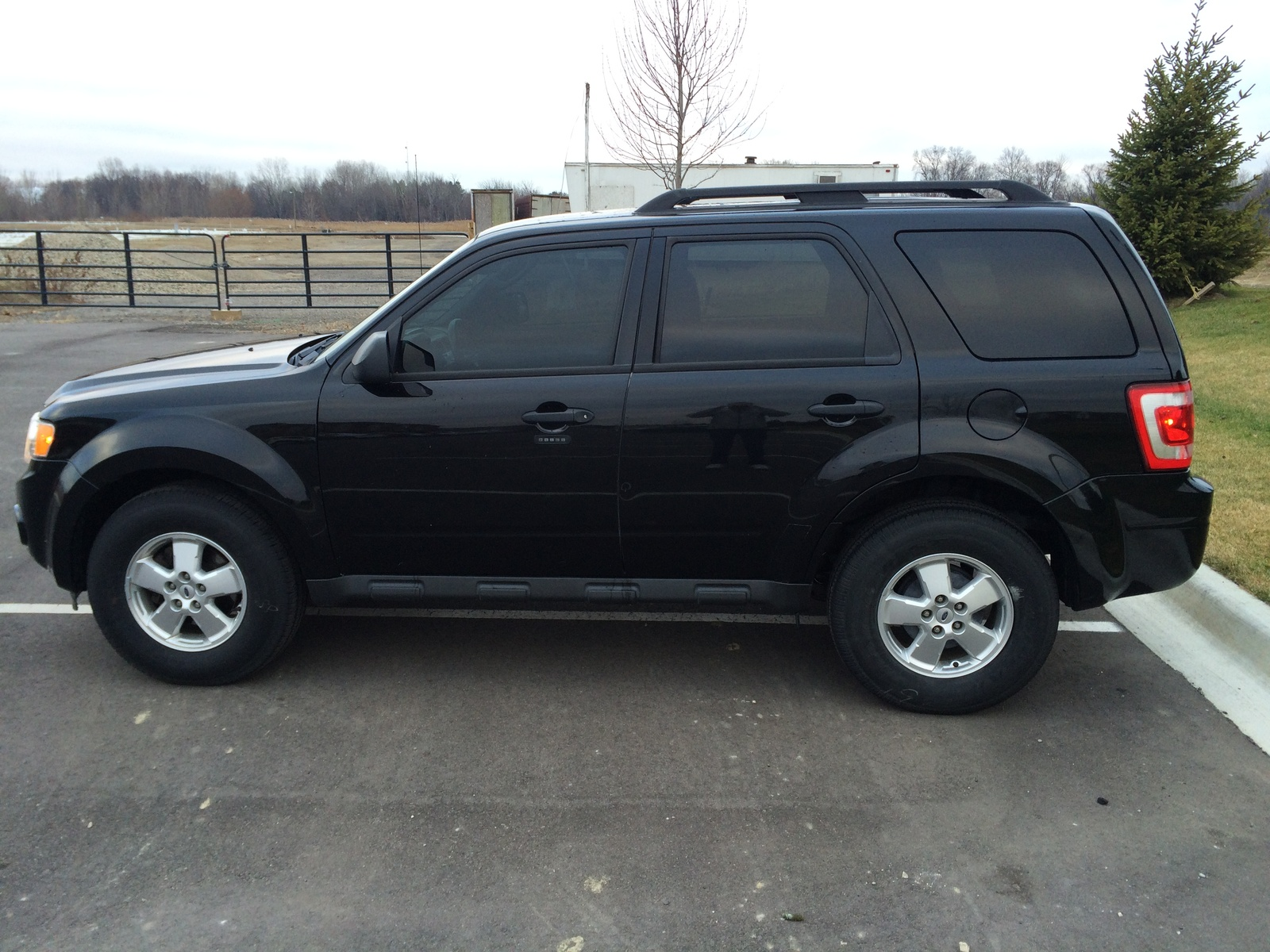 2011 Ford Escape Pictures Cargurus