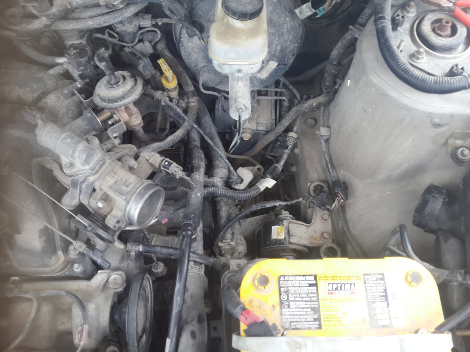 Ford Escape Questions 2005 Reverse Lights Not Working 2004 Wiring Diagram It Is The Bulb