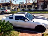 Picture of 2007 Ford Mustang V6 Deluxe