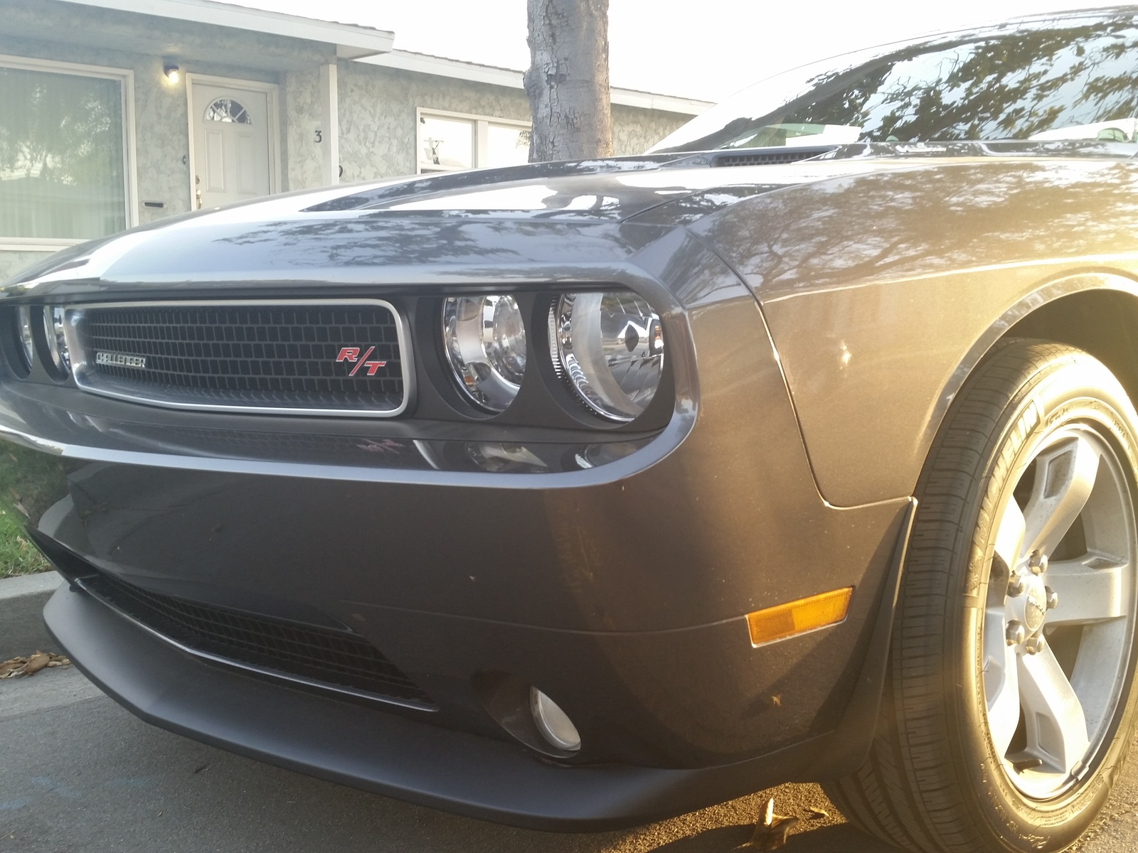 Picture of 2014 Dodge Challenger R/T