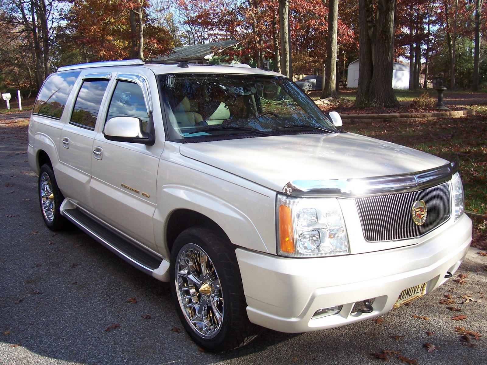 user reviews 2004 cadillac escalade esv platinum edition autos post. Black Bedroom Furniture Sets. Home Design Ideas