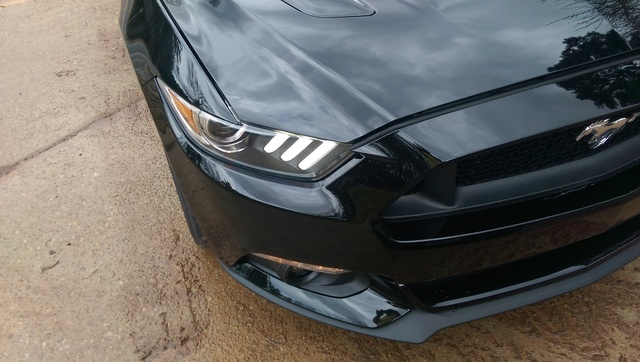 Picture of 2015 Ford Mustang GT Premium, exterior, gallery_worthy