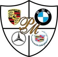 Platinum Motors logo