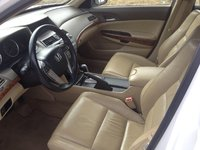 Picture of 2010 Honda Accord EX-L, interior