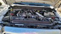 Picture of 2013 Ford F-250 Super Duty Platinum Crew Cab 6.8ft Bed 4WD, engine