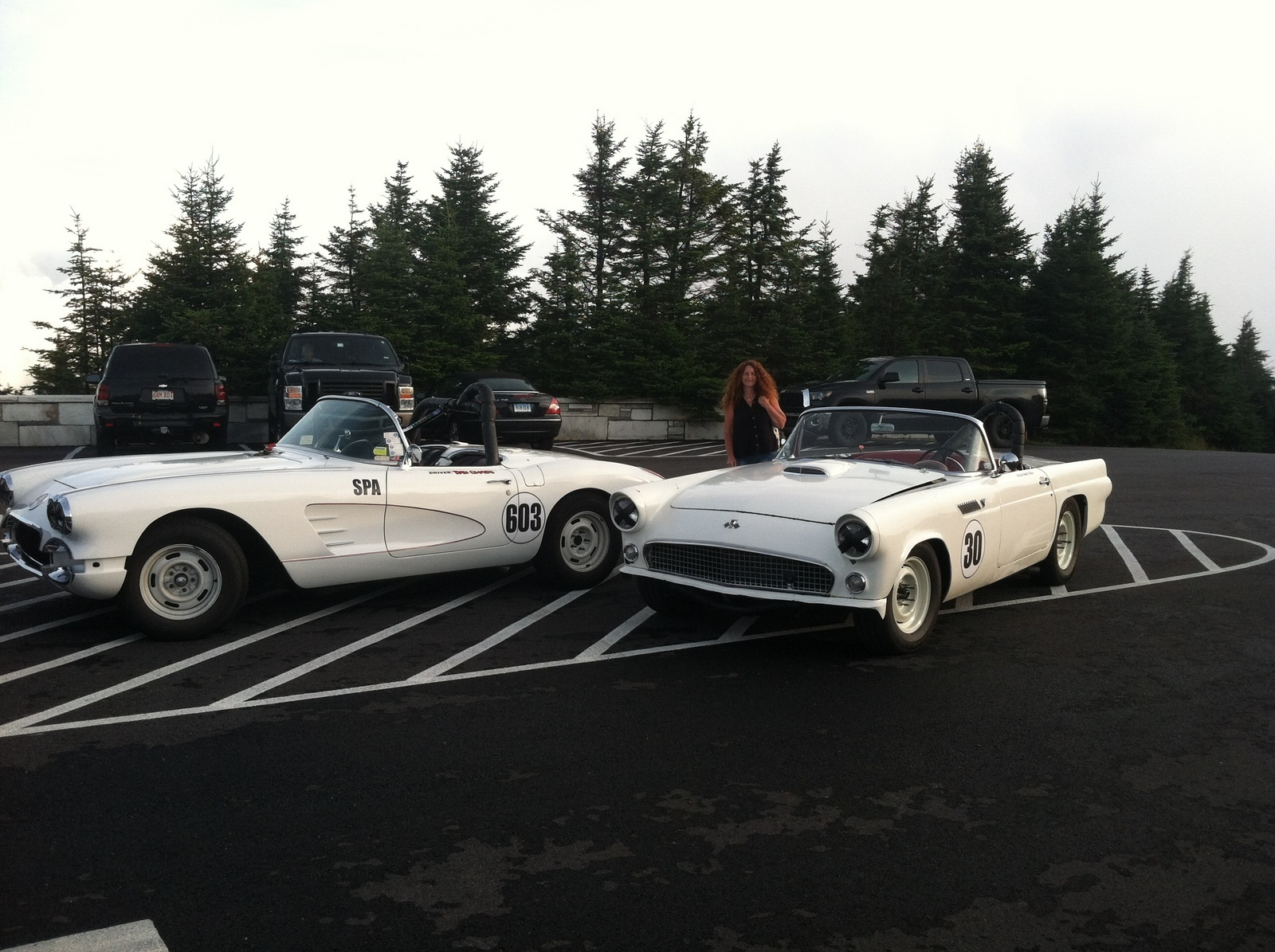 1955 Ford Thunderbird Overview Cargurus 1954 Convertible