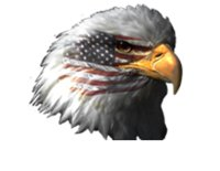 Eagle Automotives logo