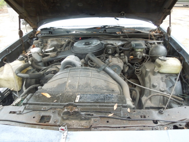 Picture of 1984 Oldsmobile Cutlass Ciera, engine, gallery_worthy