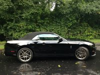 Picture of 2013 Ford Shelby GT500 Convertible