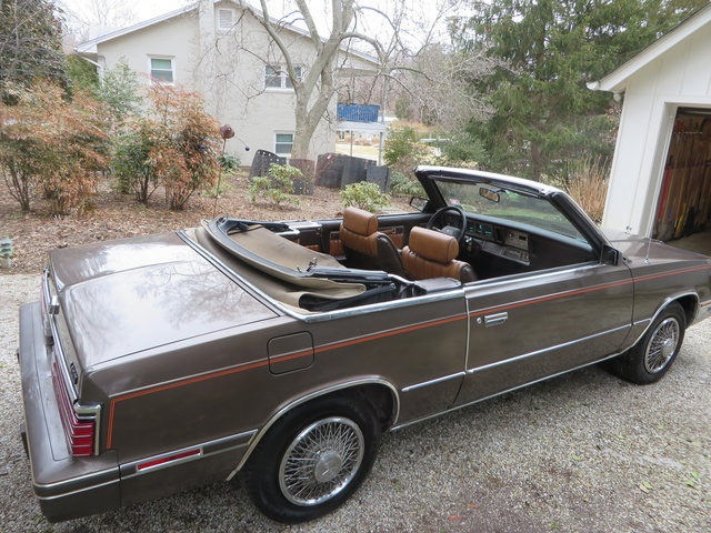 Picture of 1984 Chrysler Le Baron Mark Cross Convertible, exterior, gallery_worthy