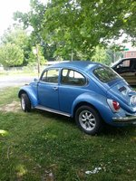 1971 Volkswagen Beetle Picture Gallery