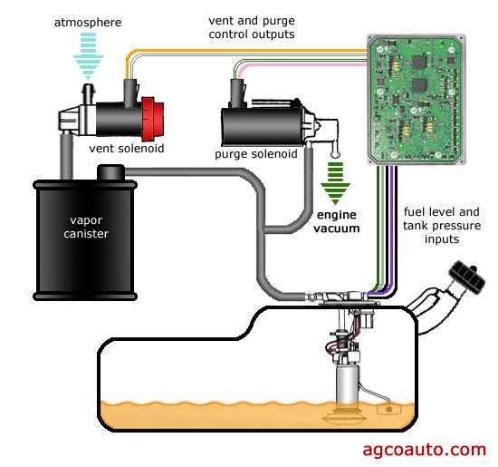 Sbf Vacuum Hoses further Stffl N likewise Original besides B F D B together with T. on 2001 hyundai elantra purge valve location