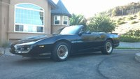 Picture of 1992 Pontiac Firebird Trans Am Convertible, exterior