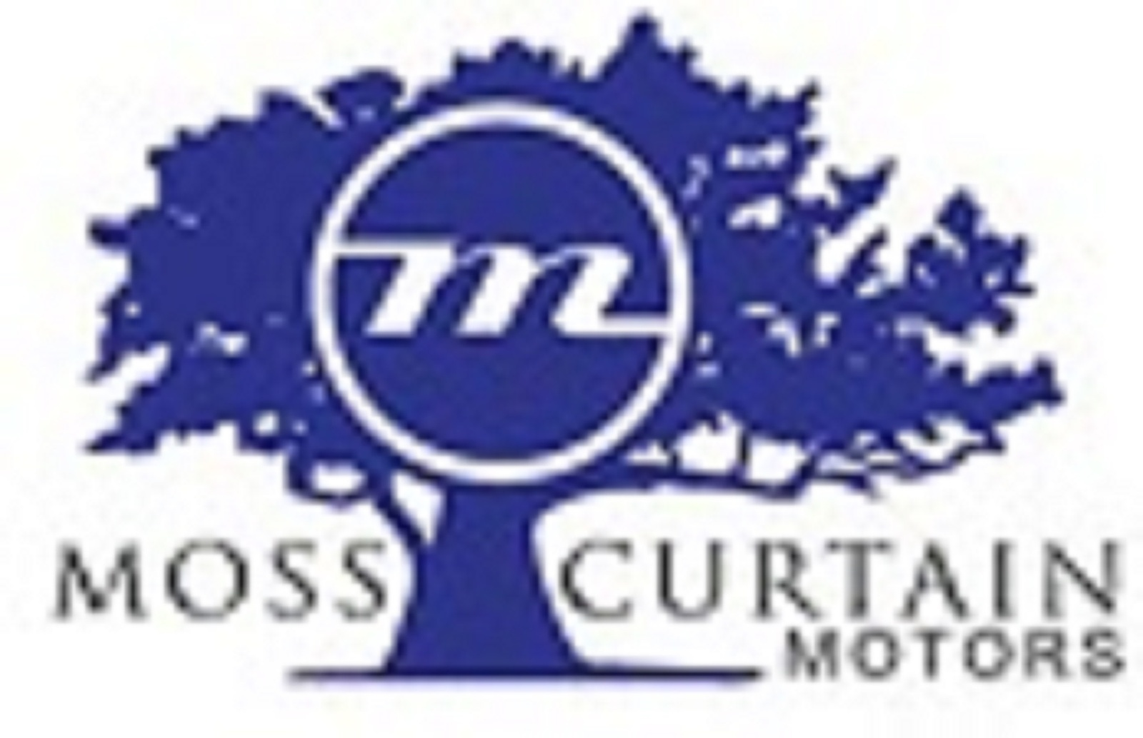Moss Curtain Motors Savannah LLC