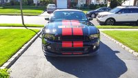 Picture of 2013 Ford Shelby GT500 Convertible, exterior