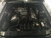 Picture of 2001 Ford Mustang SVT Cobra 2 Dr STD Convertible, engine