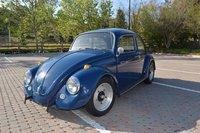 1967 Volkswagen Beetle Picture Gallery