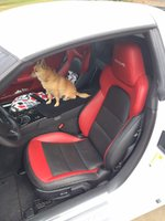 Picture of 2013 Chevrolet Corvette Z06 2LZ, interior