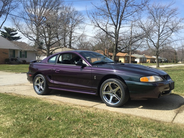 1996 ford mustang svt cobra pictures cargurus. Black Bedroom Furniture Sets. Home Design Ideas