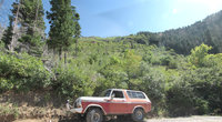 1978 Ford Bronco Overview