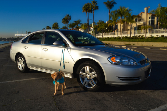 2013 chevrolet impala pictures cargurus. Cars Review. Best American Auto & Cars Review
