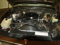 Picture of 1981 Chevrolet El Camino Base, engine
