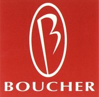 Boucher Nissan of Waukesha logo