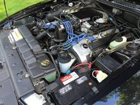 Picture of 1996 Ford Mustang SVT Cobra Coupe, engine, gallery_worthy
