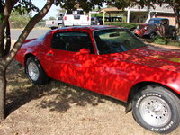 1977 Pontiac Firebird Picture Gallery