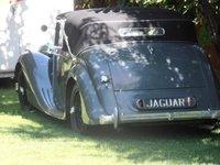 1955 Jaguar D-TYPE Overview